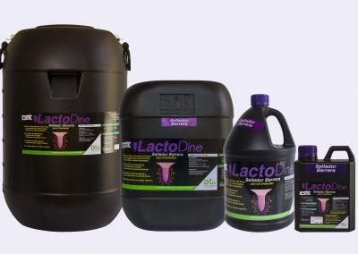 LactoDine